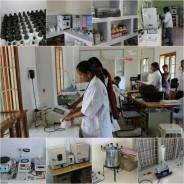 Lab Assessment